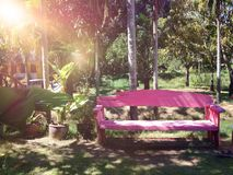 Empty pink wooden bench in garden Royalty Free Stock Photography