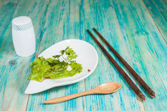 Empty plate, dirty after the meal is finished Royalty Free Stock Photography