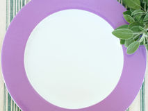 Empty plate frame with sage Stock Image