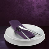 Empty plate with knife and fork Royalty Free Stock Image