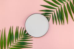 Empty plate mockup with green tropical leaves. Creative flat lay top view of green tropical palm leaves millennial pink paper background with empty plate mock up stock photography