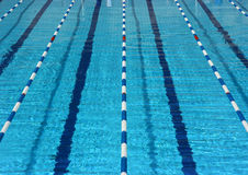 Empty pool lanes Stock Image