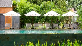 Empty poolside loungers with umbrellas.  Stock Photos