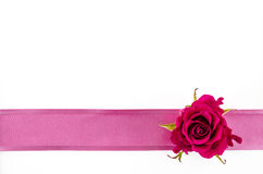 Empty postcard background with rose flower and pink ribbon Royalty Free Stock Photos