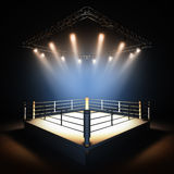 Empty professional boxing ring. Royalty Free Stock Photo