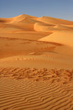 Empty Quarter Dunes Stock Images