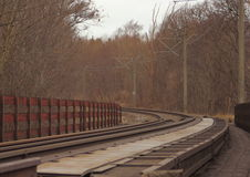 Empty railroad though forest at winter time Royalty Free Stock Image