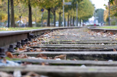 Empty railway in autumn day Royalty Free Stock Image