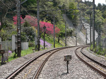 Empty railway road background. Empty railway road scene in springtime in Japanese mountains Royalty Free Stock Images
