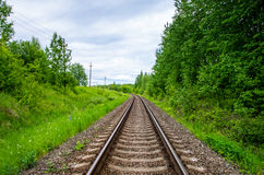 Empty railway track in green forest Royalty Free Stock Images