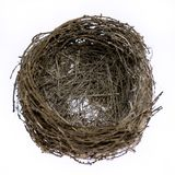 Empty real natural bird nest royalty free stock image