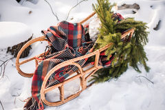 Empty real sleigh with pine tree branches Stock Images