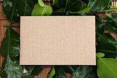 Empty recipe brown paper texture  with variety fresh haelthy her Royalty Free Stock Image