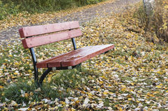 Empty red bench in autumn. Typical wet autumn weather and empty bench in the park Stock Photo