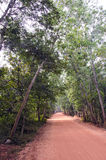 Empty red gravel road in Auroville, India Royalty Free Stock Images
