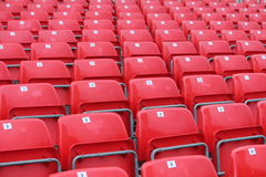 Empty red seats in stadium. With numbers Royalty Free Stock Photo