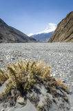 Empty riverbed in Himalaya mountains Royalty Free Stock Photos