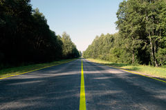 Empty road. Passes through forest Royalty Free Stock Image