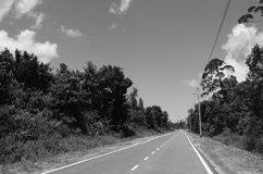 An empty road Royalty Free Stock Image