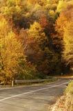 Empty road Stock Photos