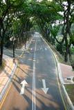 Empty road. With big trees around. (malaysia Stock Photo