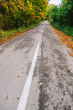 Empty road in autumn Stock Images