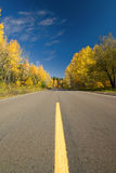 Empty road through autumn forest, Minnesota Stock Image