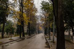 Empty road in autumn on a rainy day stock photography