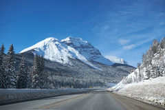 Empty road at Banff, Canada. Empty road during winter at Banff, Canada, with snow covered mountains and trees royalty free stock image