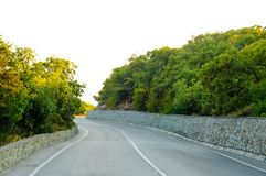 Empty Road in Beautiful Green Summer Forest Stock Images