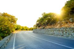 Empty Road in Beautiful Green Summer Forest Royalty Free Stock Image