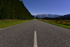 Empty road with blue sky and pine trees. Empty road with blue sky and pine trees Royalty Free Stock Photo