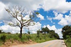 Empty road at Brazil Royalty Free Stock Photos