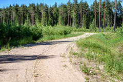 Empty road in the countryside in summer. Empty road with tire tracks in the countryside with forest in surrounding. perspective in summer with mist and green Royalty Free Stock Photos