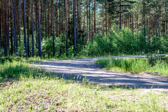 Empty road in the countryside in summer. Empty road with tire tracks in the countryside with forest in surrounding. perspective in summer with mist and green Royalty Free Stock Image