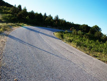 Road curving through forest. Empty road curving through forest Stock Photos