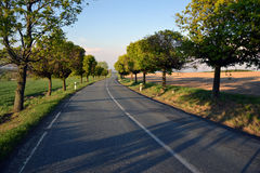 Empty road in Czech Republic Royalty Free Stock Photos