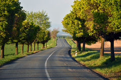 Empty road in Czech Republic Royalty Free Stock Photography