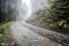 Empty road in foggy forest. With motion blur Royalty Free Stock Photos
