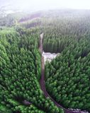 Empty road in a forest from a drone Stock Photo