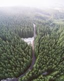 Empty road in a forest from a drone Royalty Free Stock Photography