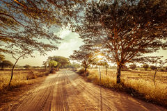 Empty road going through rural landscape under sunset sky Royalty Free Stock Image
