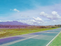 Empty road in green summer field. Tropical palm forest and mountain. Pink and blue toned photo Stock Photos
