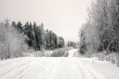 Empty road with huge snow banks on sides on cloudy winter day. Empty road with huge snow banks on sides on cloudy winter day royalty free stock photos