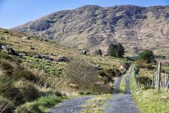 Empty Road Ireland 0016. Empty mountain road with grass in middle. Location: The Black Valley, near Killarney and the Ring of Kerry, south west coast of Ireland Royalty Free Stock Image