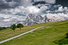 Empty road in the Italian Alps. A lonely road in Alpe Di Siusi, in the Italian Alps Royalty Free Stock Photo