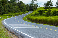 Empty road in jungle on background for nature. Royalty Free Stock Photos