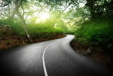 Empty road in jungle of Seychelles Stock Photos