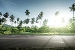 Empty road in jungle of Seychelles islands Stock Photo