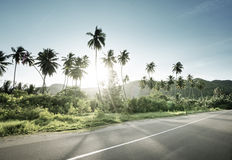 Empty road in jungle of Seychelles islands Stock Photography